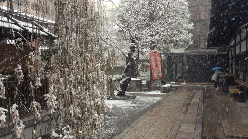 早速初雪です。